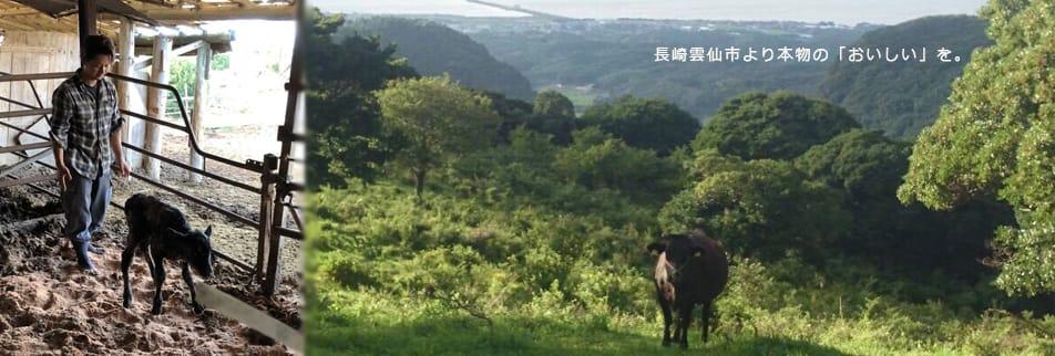 ハンバーぐりこ公式|HAMBUR Glico|黒毛和牛農家直営!レアハンバーグ屋さん